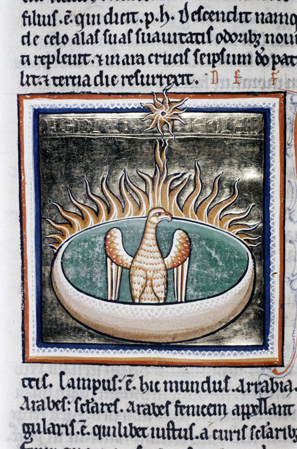 Phoenix surrounded by flames, from the Ashmole Bestiary, English, early 13th c. Oxford: Bodleian Library, MS Ashmole 1511, fol. 68r