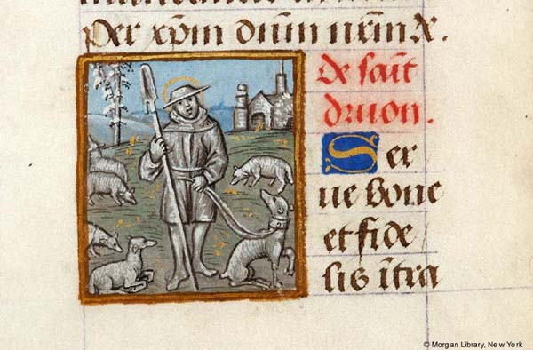 Manuscript image of Saint Drogo as a shepherd